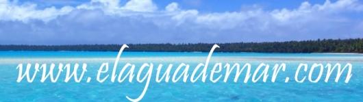 Produce tu propia Sal Marina Integral: 2,5 kilos en 20 días evaporando Agua deMar